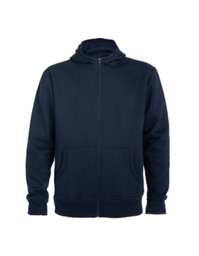 Picture of Blue hoodie - first price